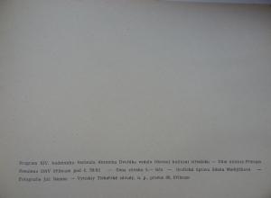 program_29