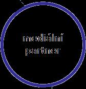 medialni_partner